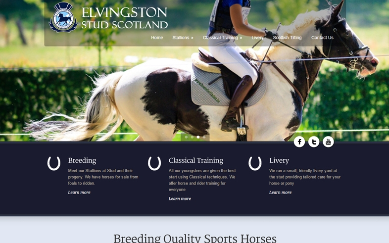 elvingstonstud